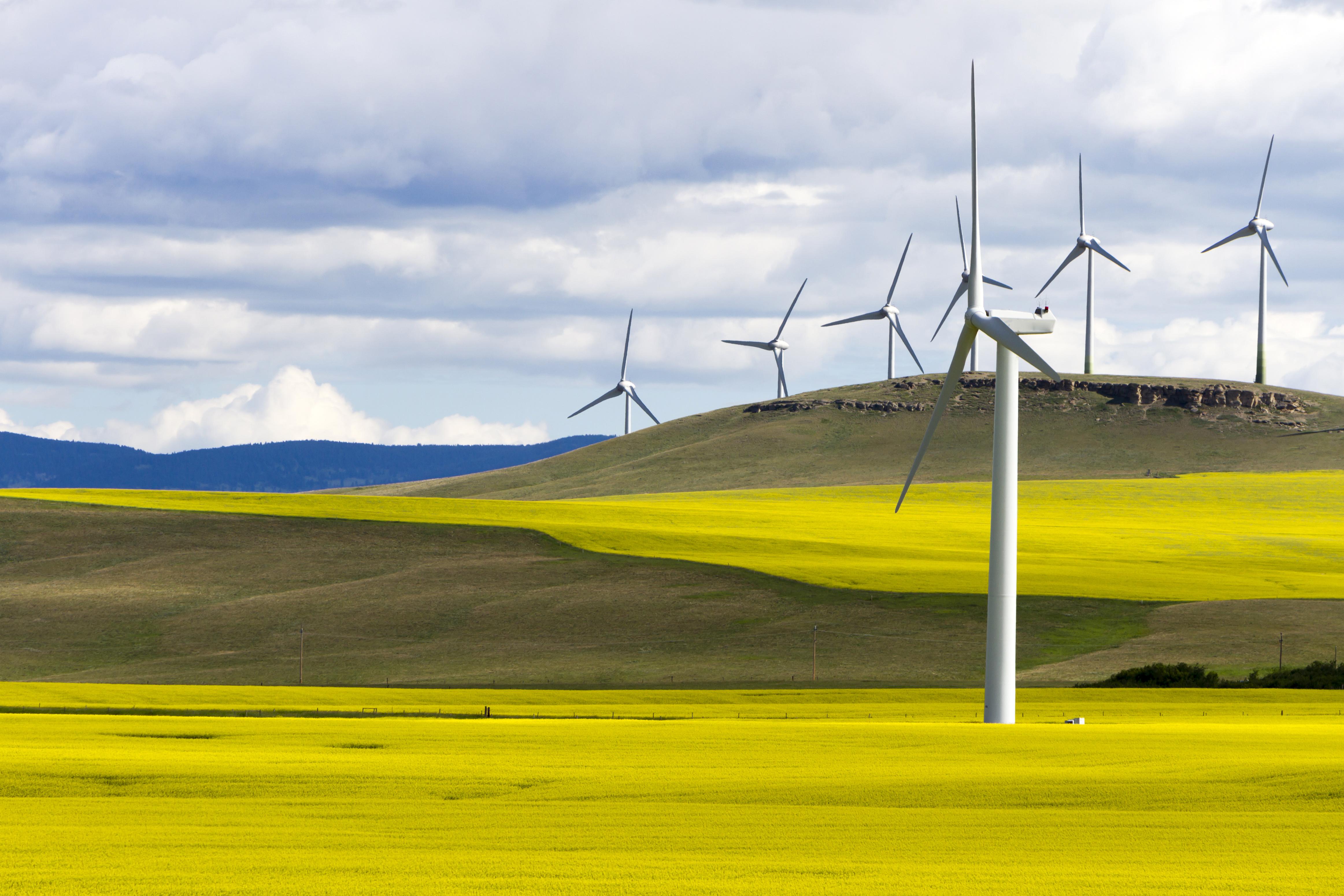 Wind turbine renewable energy, Western Canada