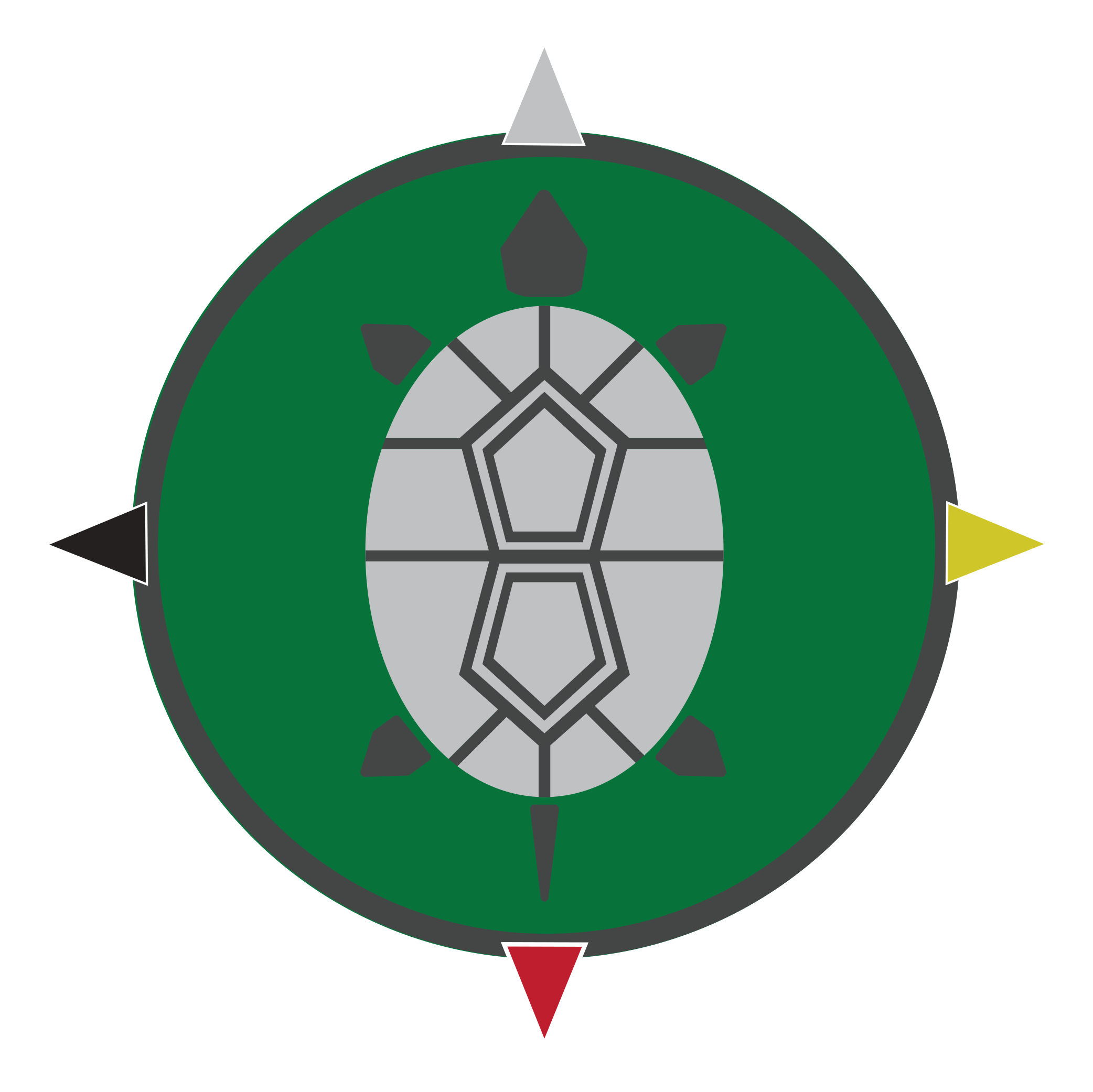 Apeiron Turtle_green